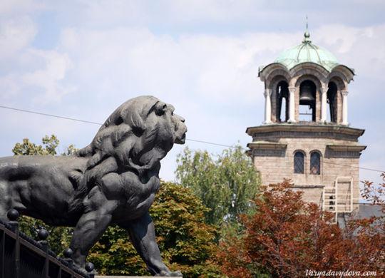 Лев в Софии
