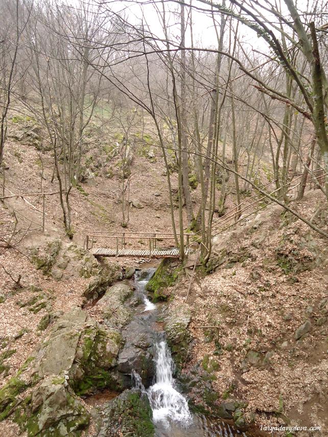 Бальнеологический курорт Выршец