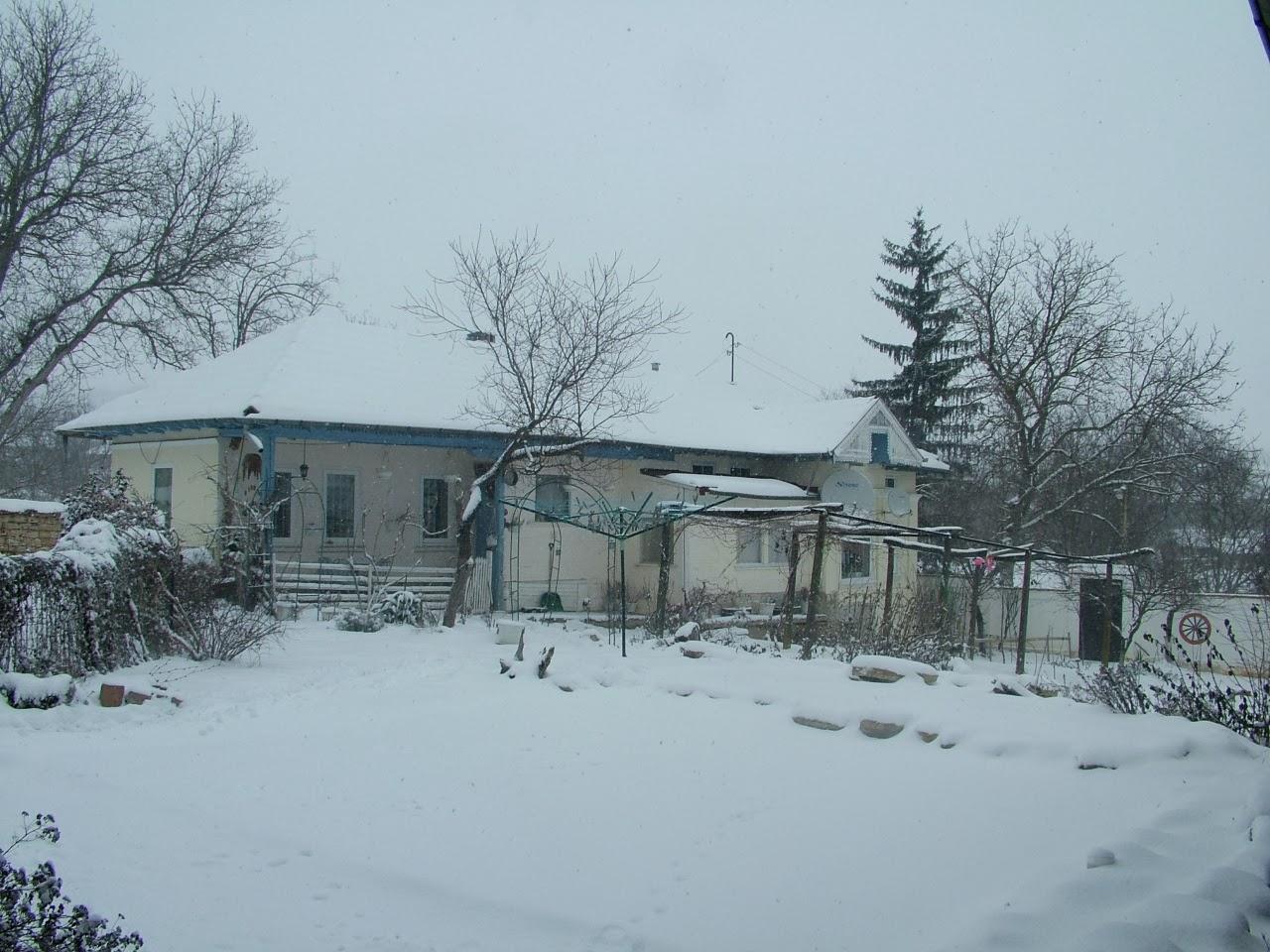 Англичане в Болгарии