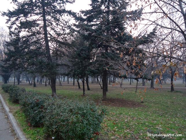 bulgaria-rogdestvo002