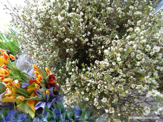Цветы зимой