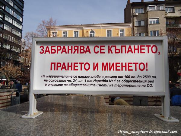 Гидротермальный источник София-Центр