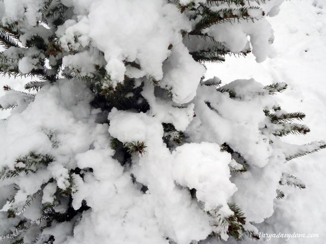 Непогода в Болгарии