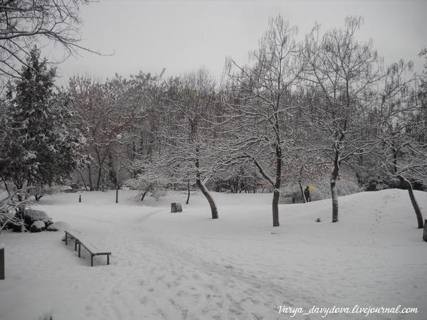 снег в Софии 2013