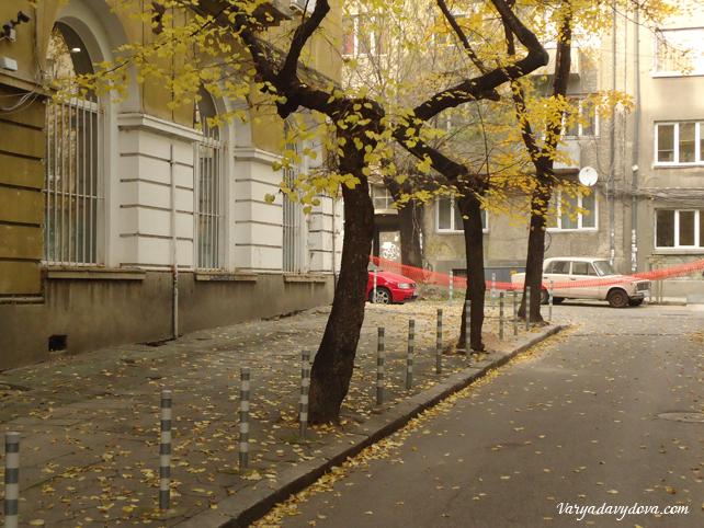 София в ноябре