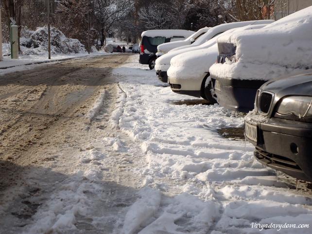 София зимой