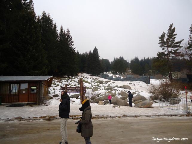 vitosha-aleko-sneg