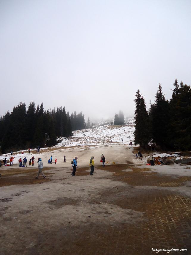 vitosha-aleko-sneg200