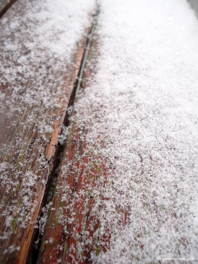 zima-v-bolgarii1