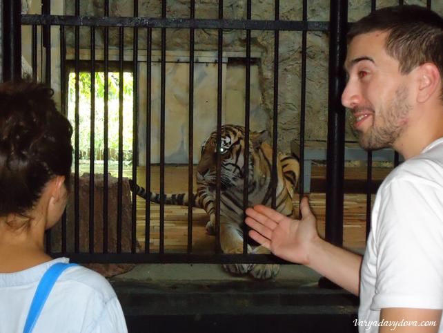 Зоопарк в Софии